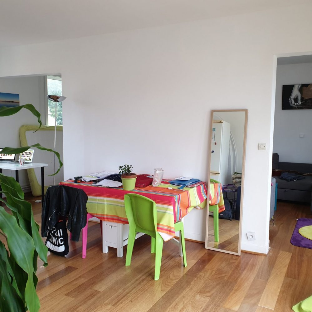 sophie-pico-architecte-interieur-decoration-renovation-appartement-montpellier-avant (7)